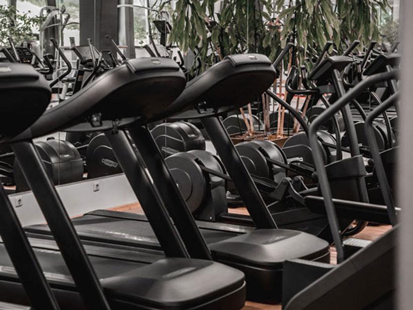 Stekos Studio München Fitness, Krafttraining - Laufbänder 2